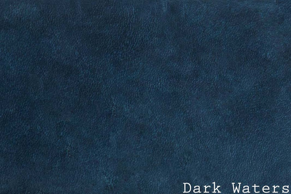 13.14-AW-Dark Waters w: text horizontal.jpg