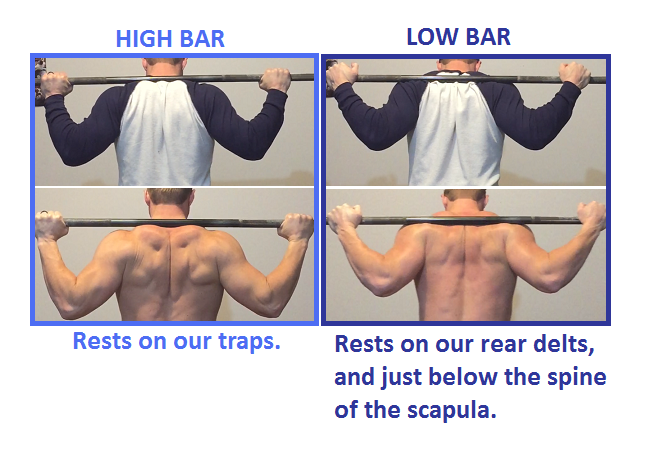 Bar Placement.png