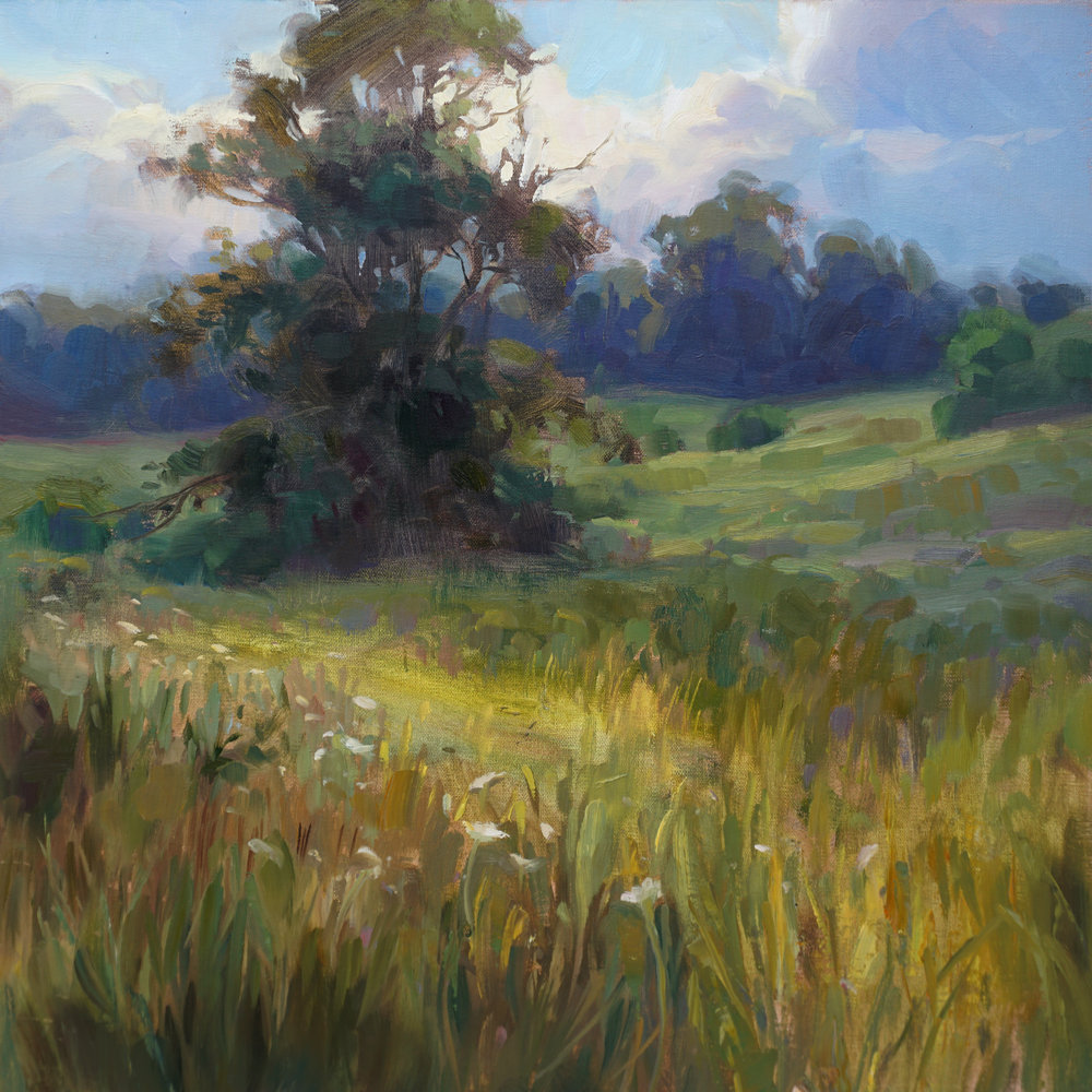 Meadow in Late Summer
