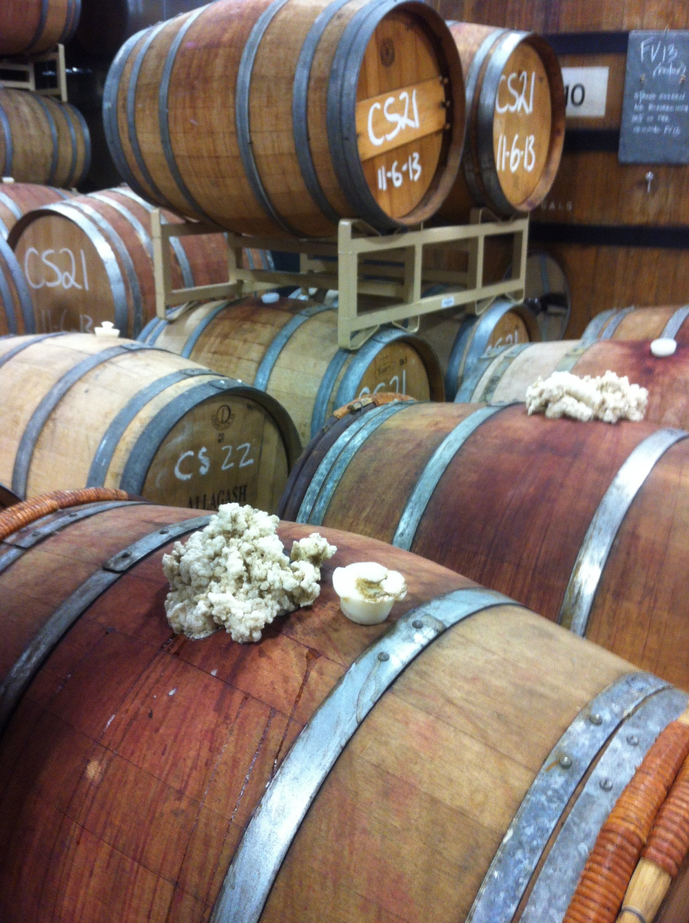 Wild fermentation in Allagash's wild barrel room, Portland
