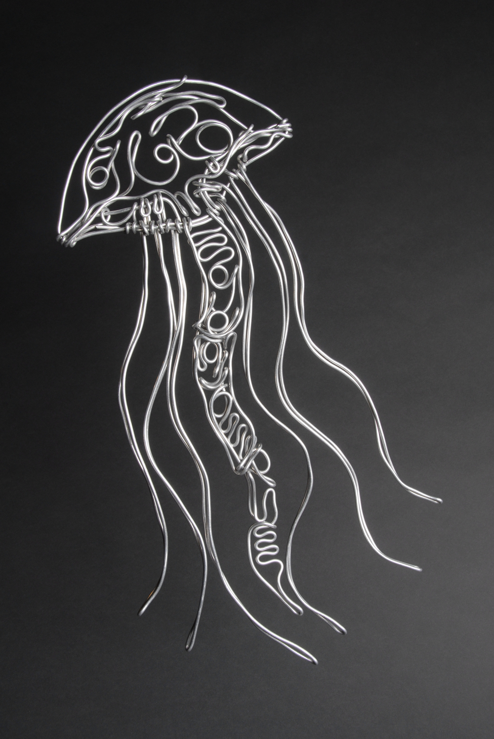 Jellyfish_sm.jpg