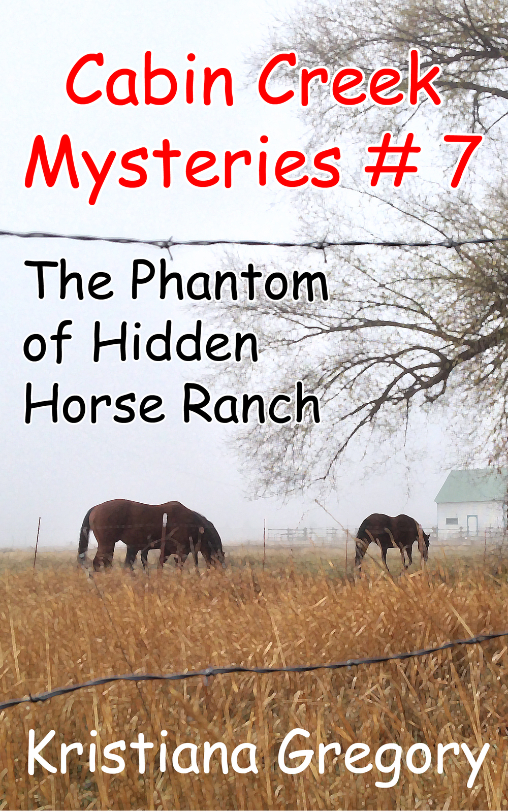 Popular middle-grade mystery series
