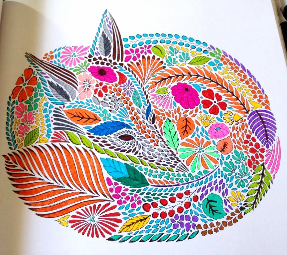 Animal Kingdom Colouring Book Coloured In : [INTERVIEW] with #MILLIEMAROTTA ILLUSTRATOR OF ADULT COLOURING BOOKS with Culture Toronto and ...