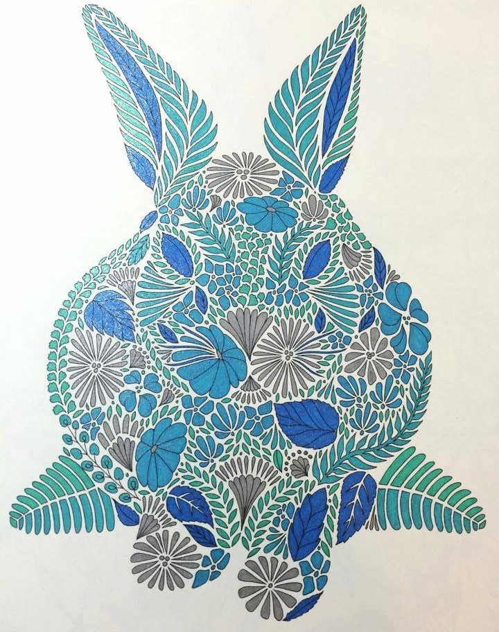 Animal Kingdom Coloring Book Examples Interview With Milliemarotta Illustrator Of Adult Colouring Books