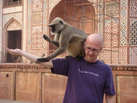 Tim_monkey