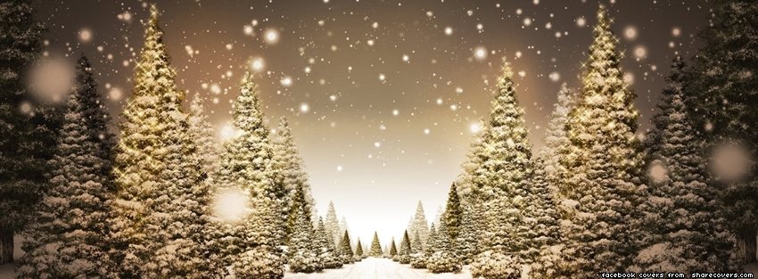 1699-xmas-tree-snow-facebook-cover