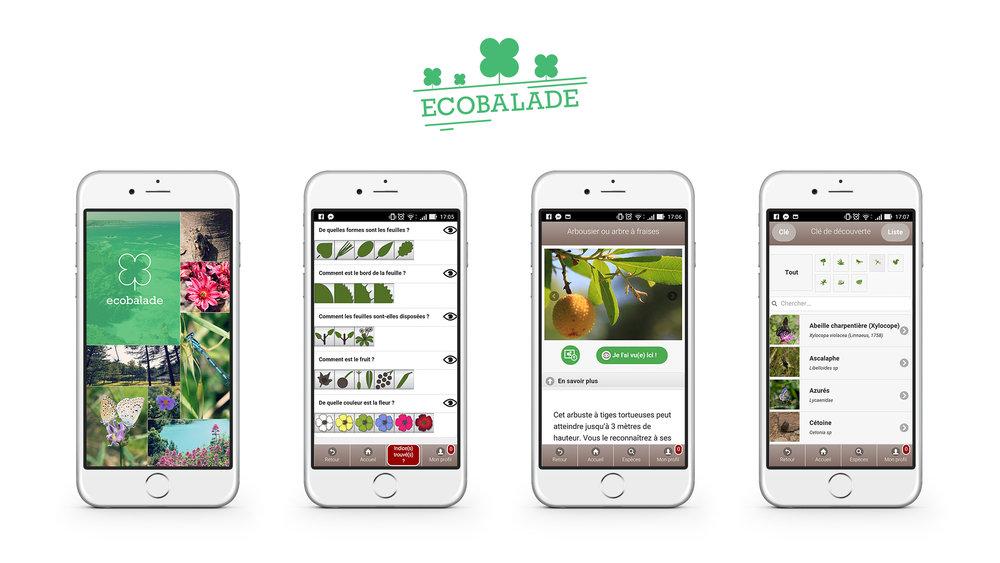 Biophilie et tourisme Ecobalade