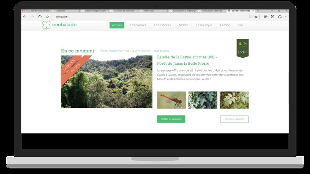 ecobalade web 3.png