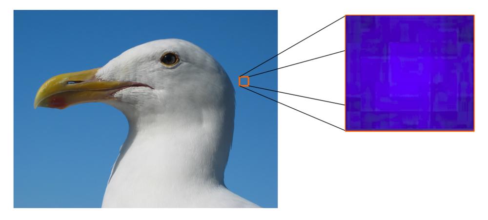 Observation des pixels d'une image.