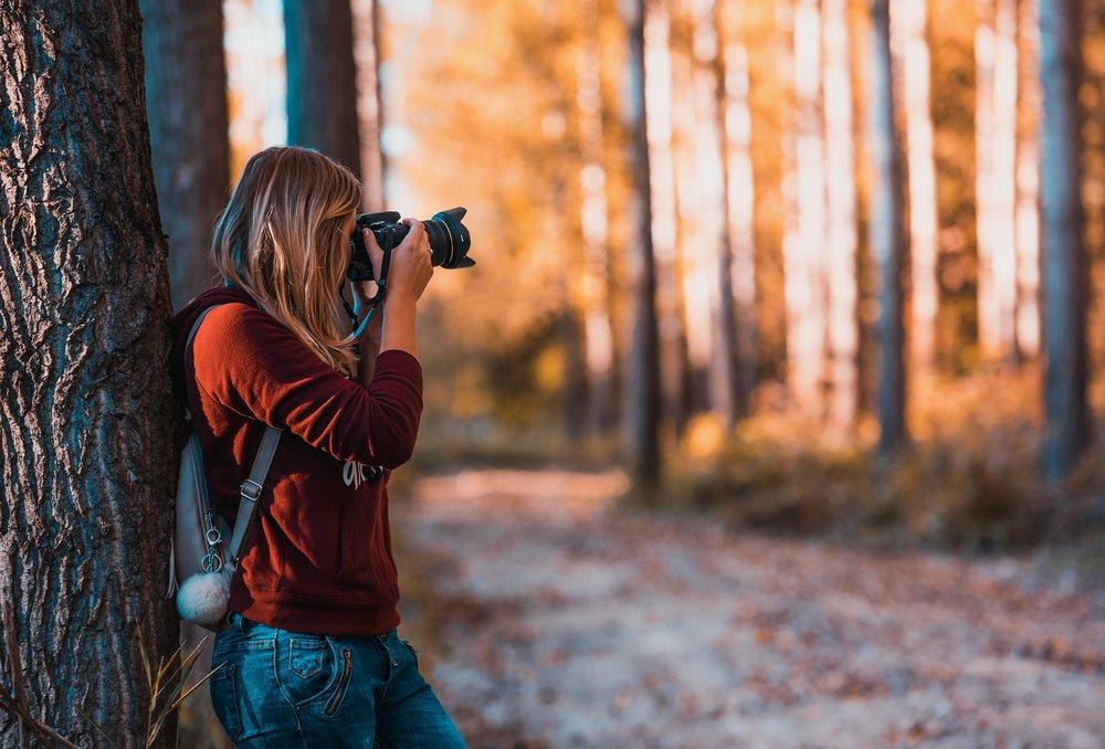 Observatoire photographique du paysage