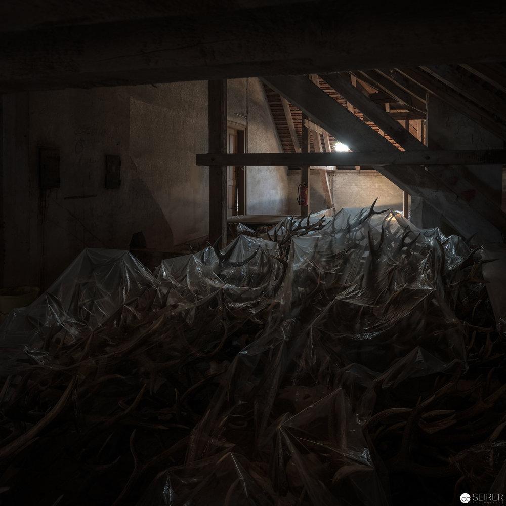 Noch mehr Trophäen werden am Dachboden gelagert...
