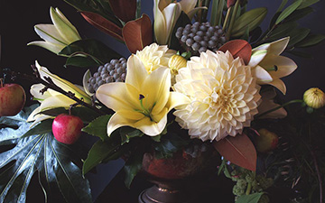 Dunedin Online - Estelle Flowers