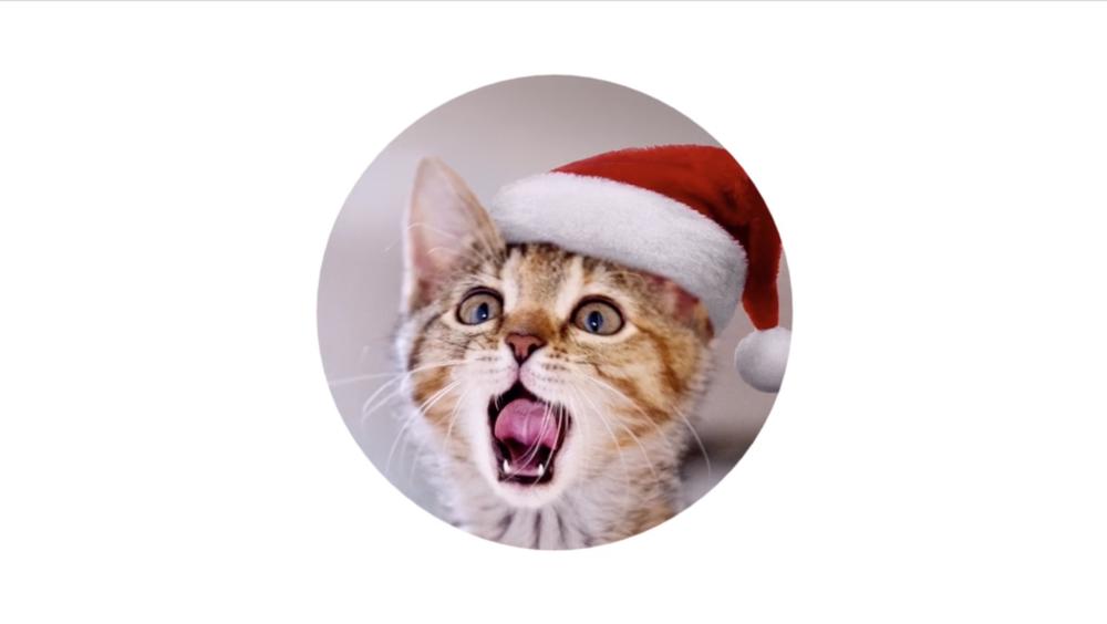 GOOGLE Home Mini Christmas