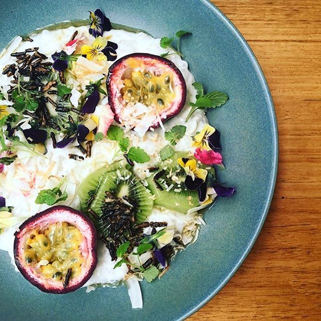 Pretty much springtime on a plate. Today at #youngbloodsdiner