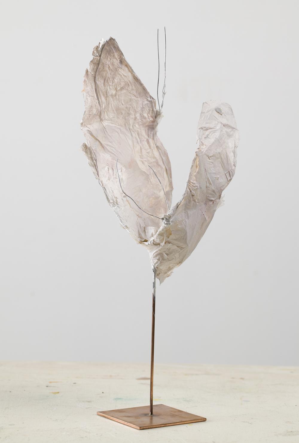 Moth play 2012