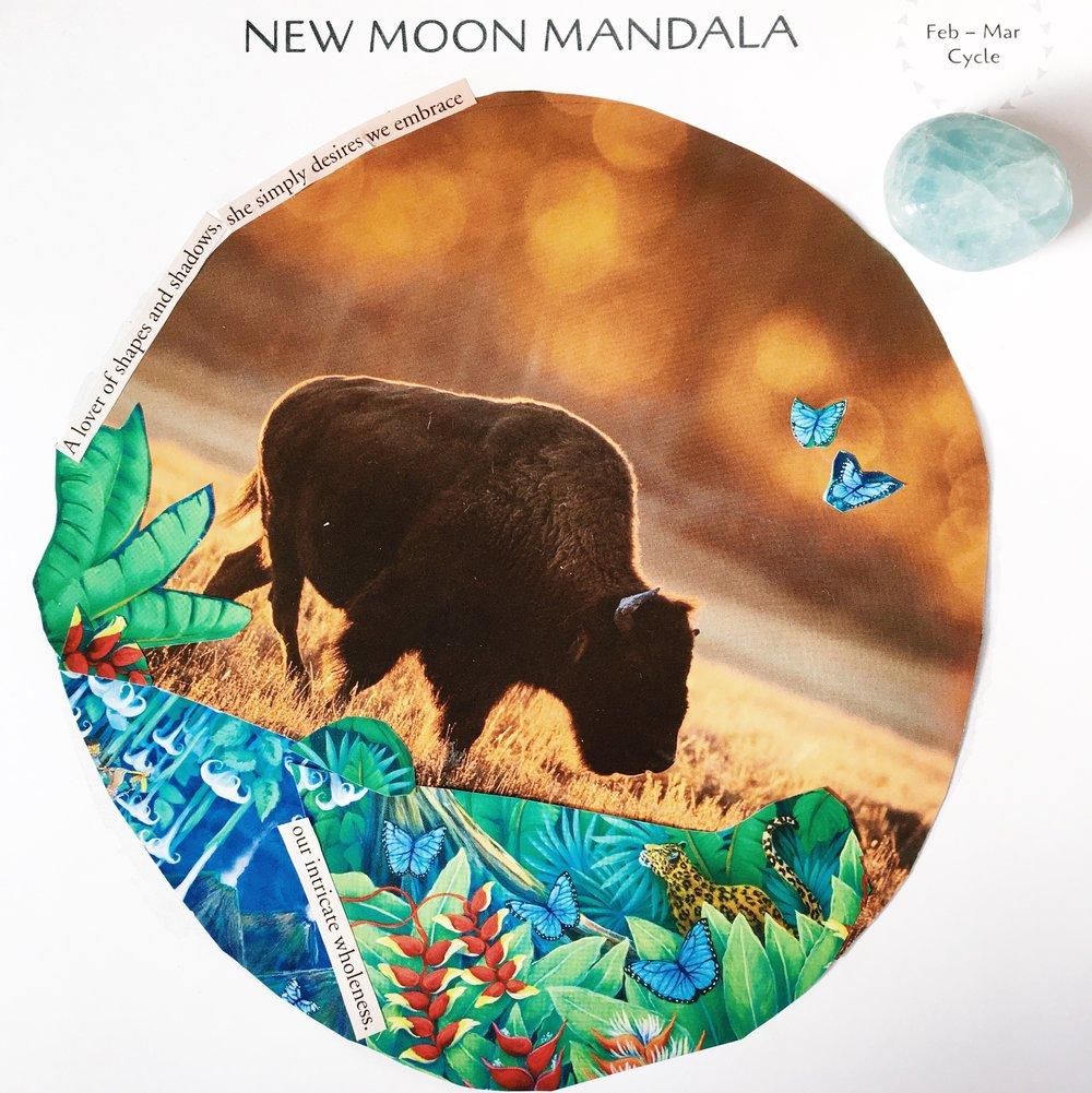 Vanessa Moon Mandala, 2017 (1).jpg