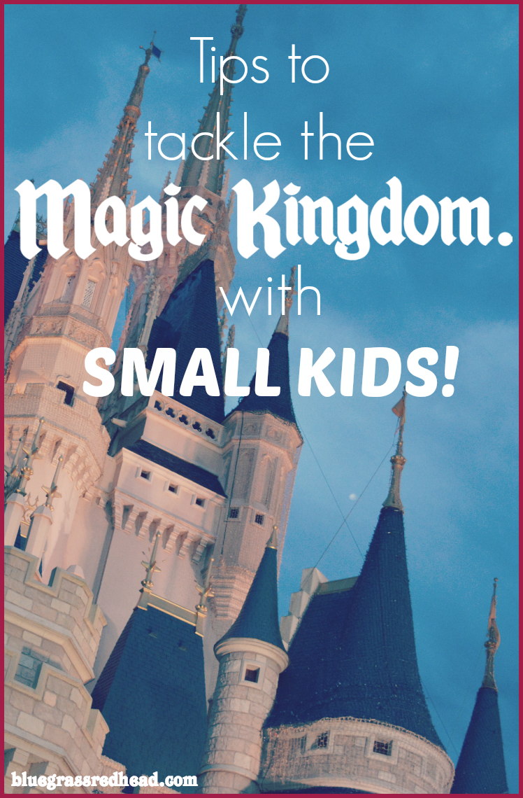 Tackling the Magic Kingdom with Small Kids