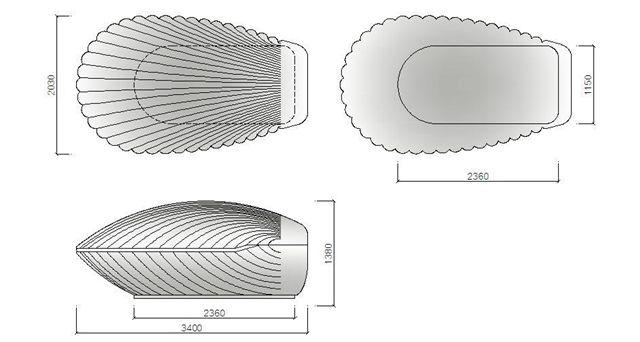 Shell size.JPG
