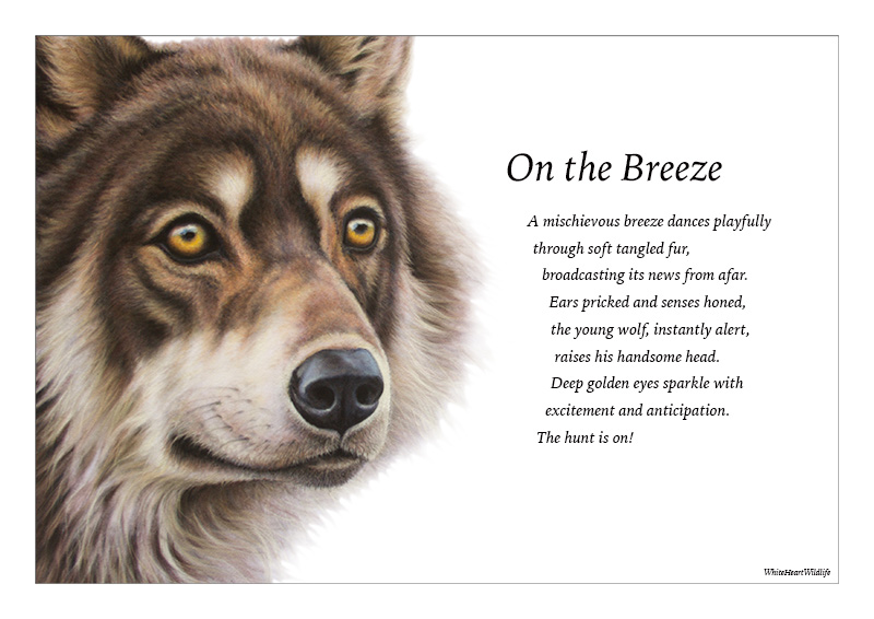 wolf-verse.jpg