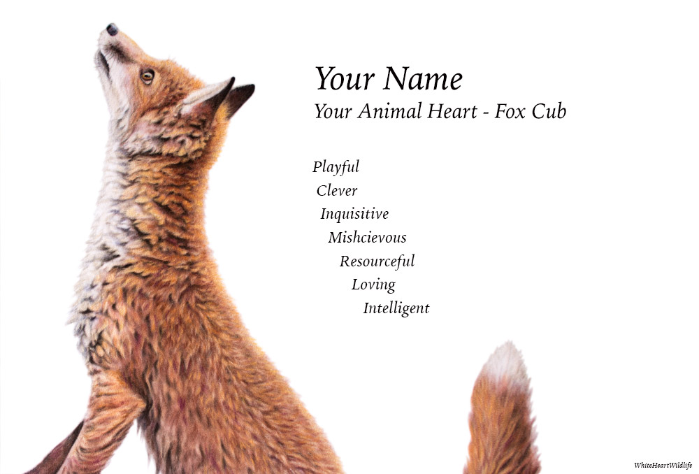 "Choose ""Fox Cub"" on the order form below."