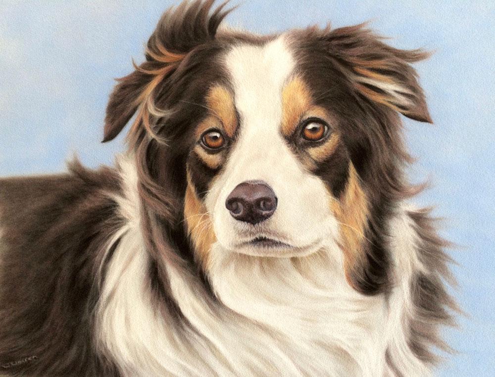 Sam (Dog commission)