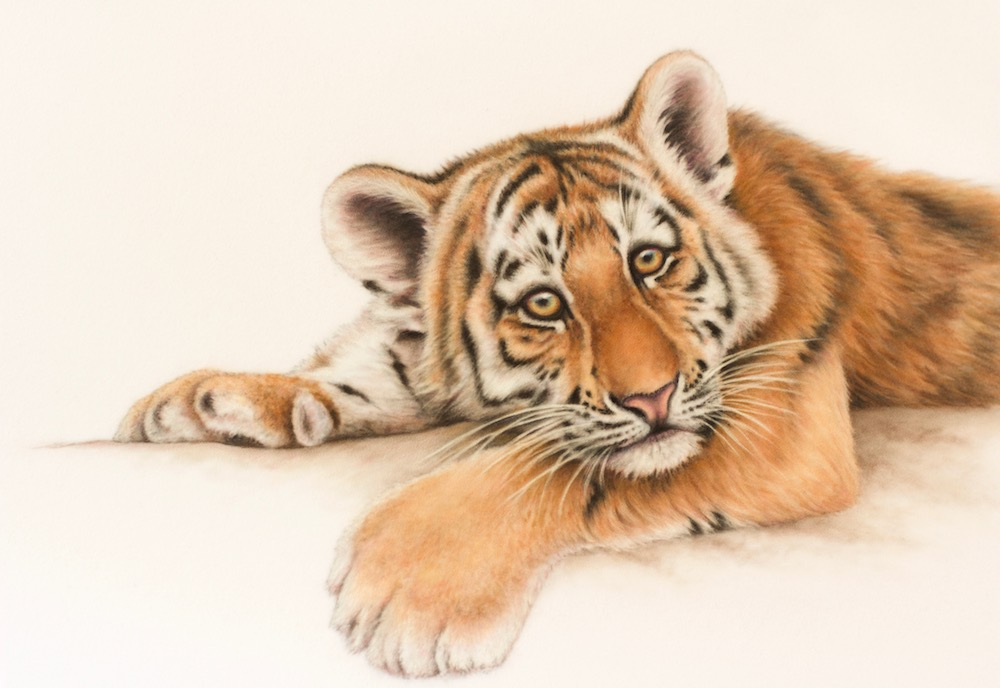 Tiger Cub by Wendy Warren