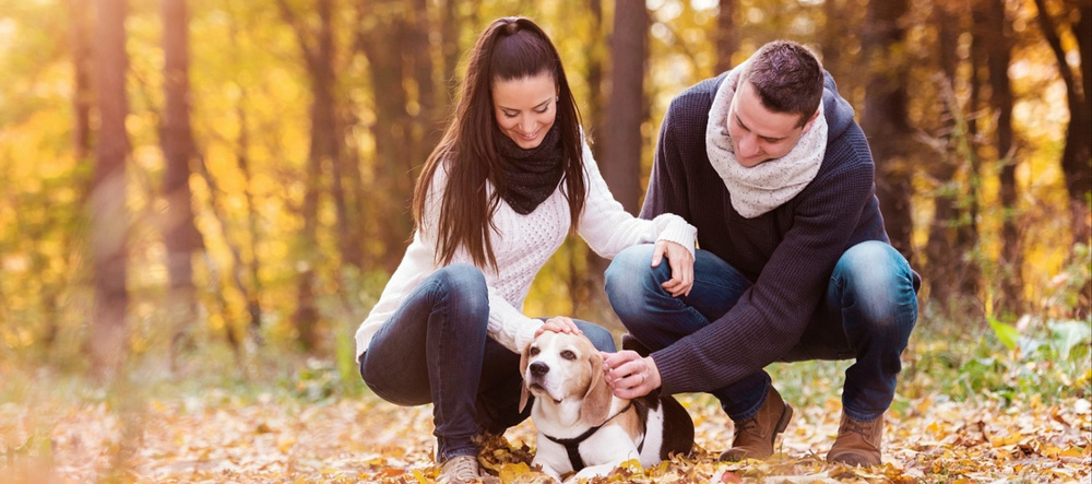 Couples Counseling Apex NC