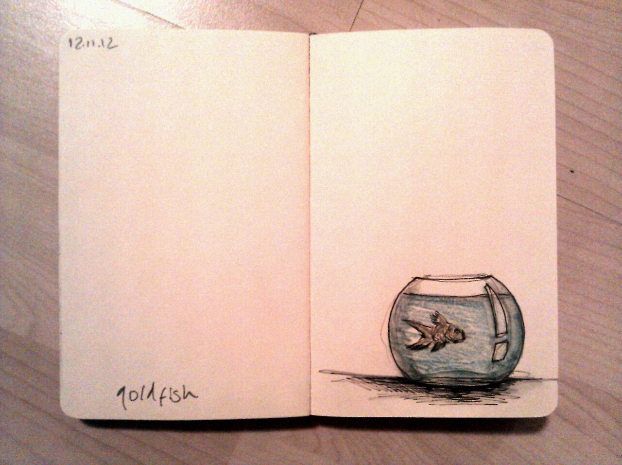 365 drawings later … day 286 … goldfish