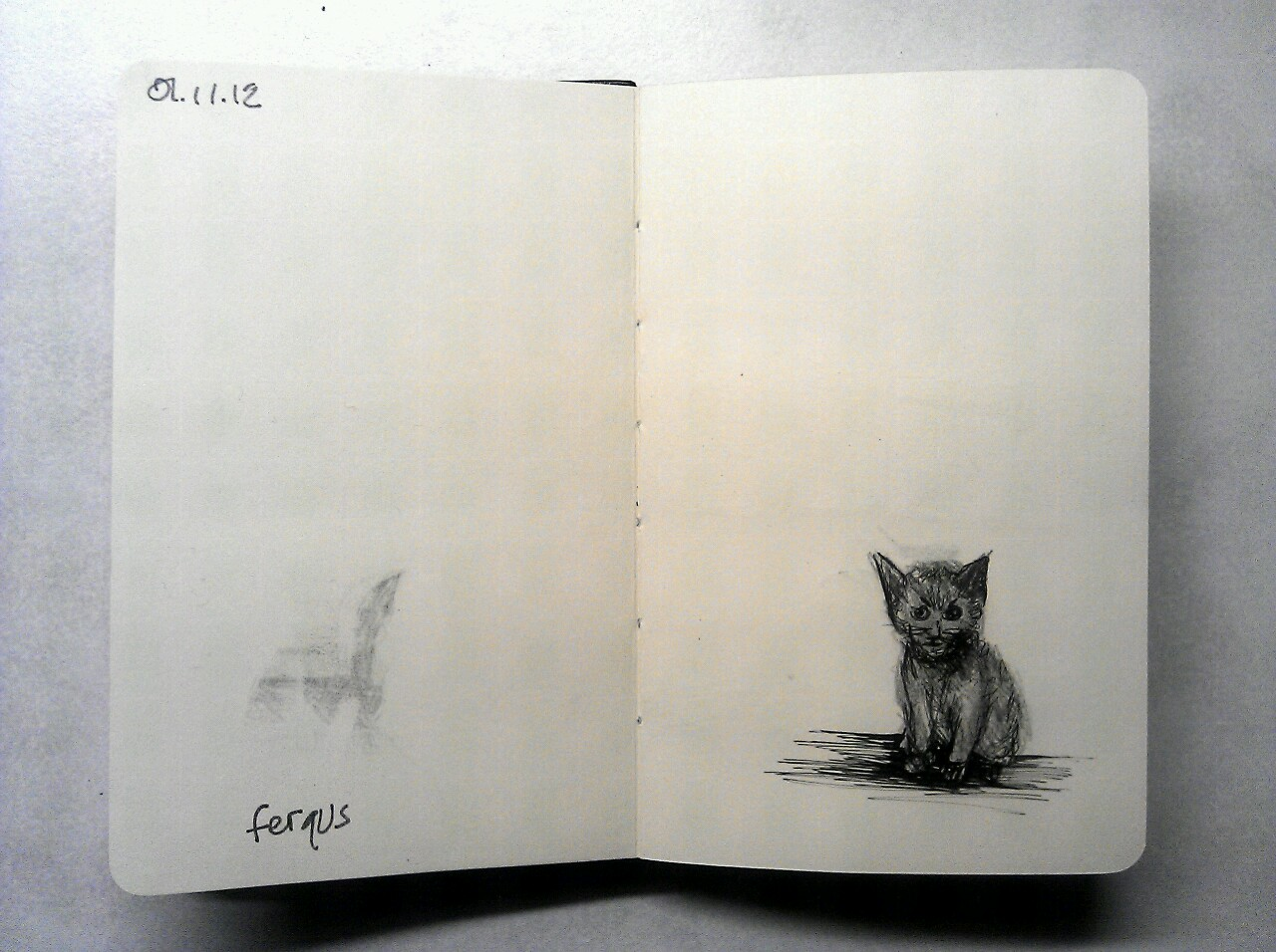 365 drawings later … day 275 … fergus