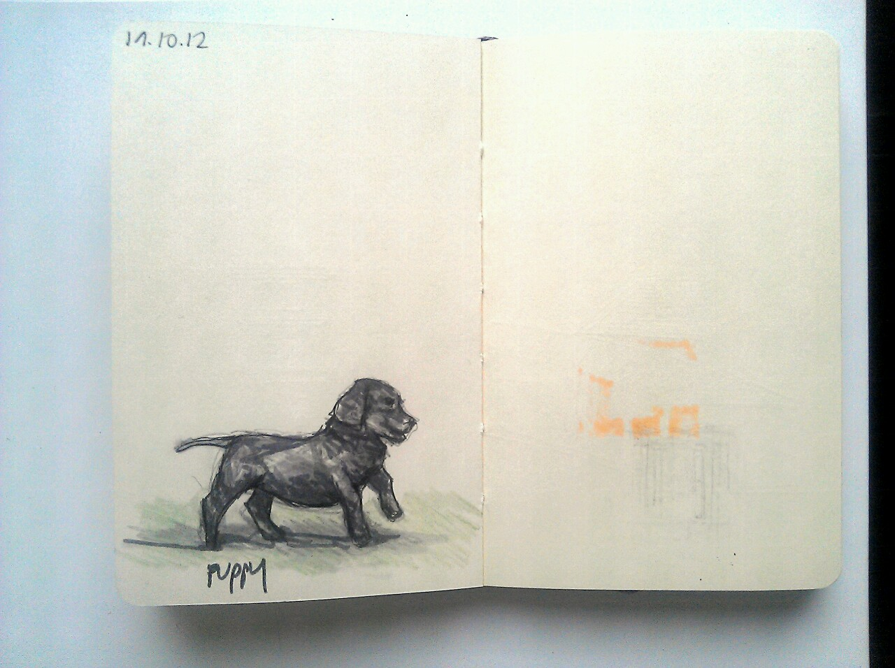 365 drawings later … day 262 … puppy