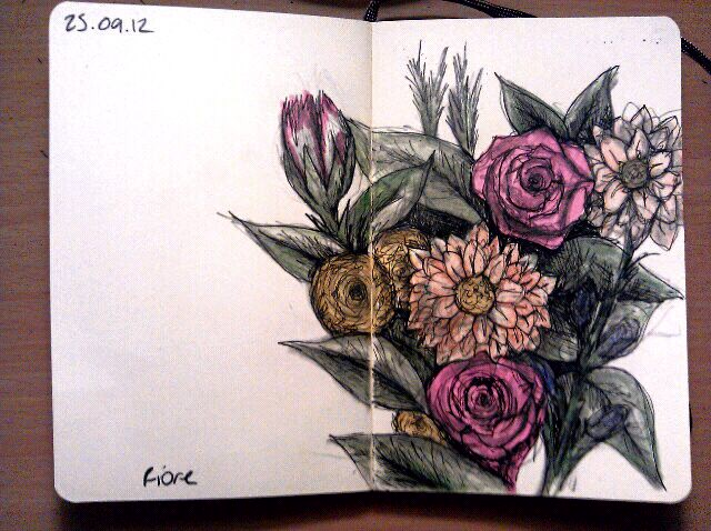365 drawings later … day 238 … fiore