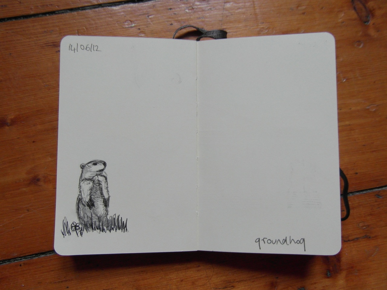 365 drawings later … day 135 … groundhog day