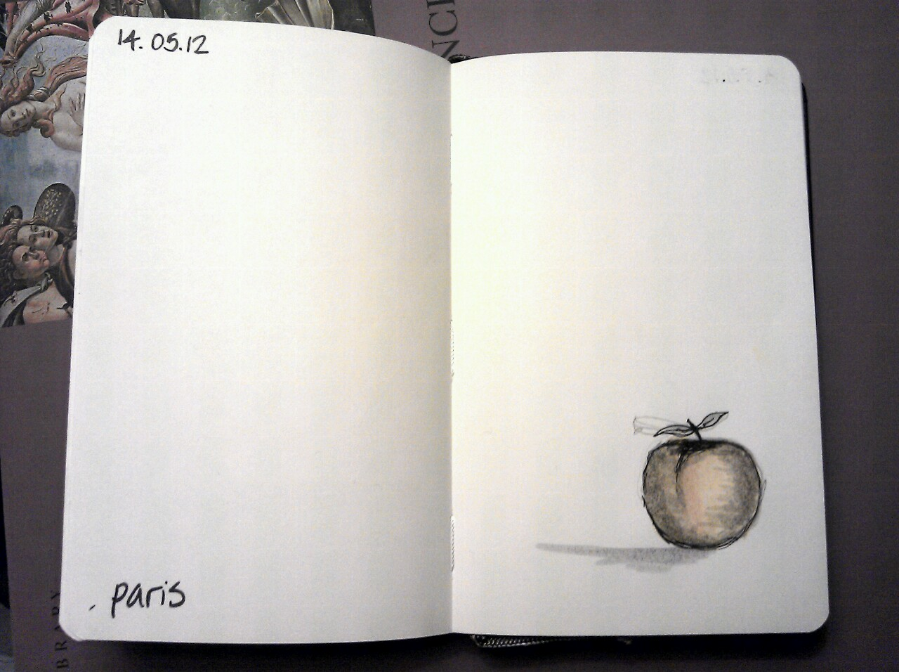 365 drawings later … day 104 … paris (golden apple)