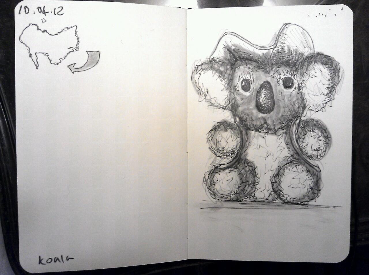 365 drawings later … day 70 … koala