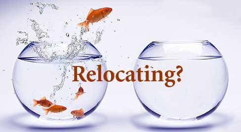 it relocation checklist