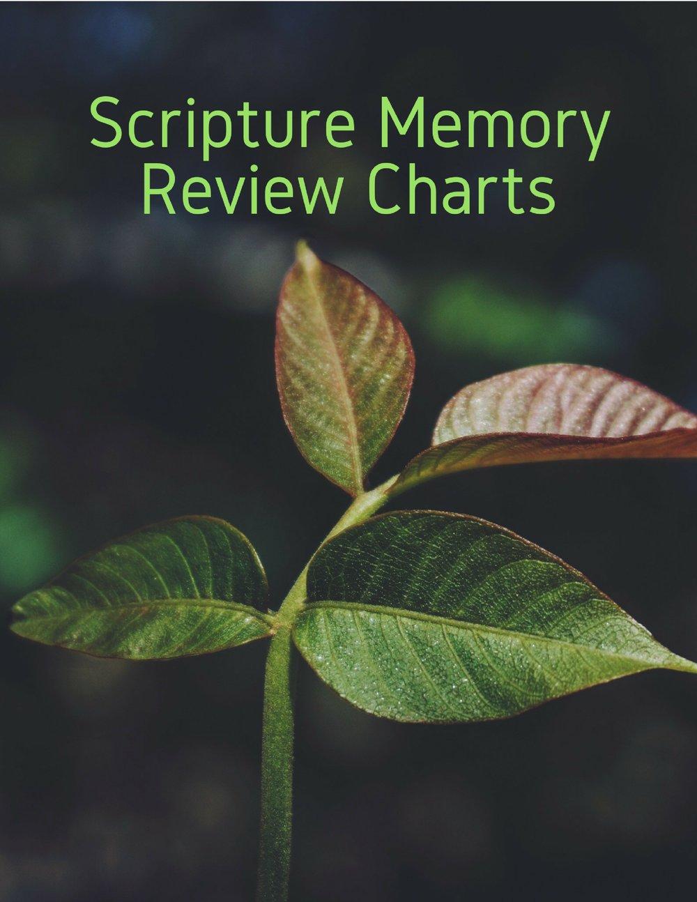 Scripture Memory.jpg
