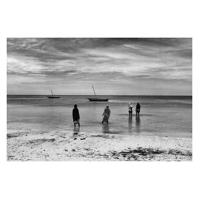 The living Coast... . #Tanzania #swahilicoast