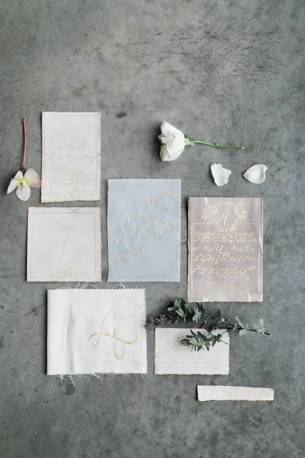 Moira Design Studio | Design House of Moira