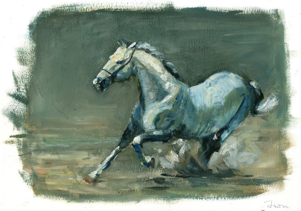 Horse oil sketch Tools: oils.