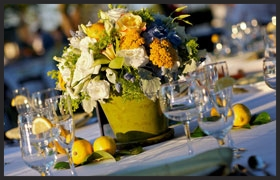 lemon_centerpiece_bgEditor_1330637620584.jpg