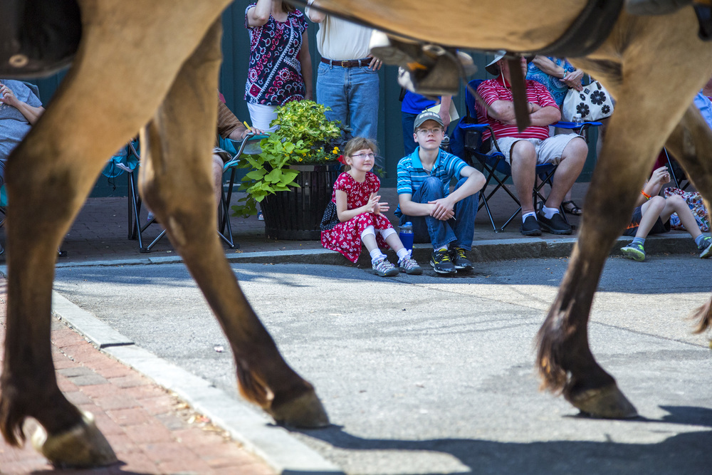Siblings look up at a horse decorated in tremendous Fourth of July adornments.