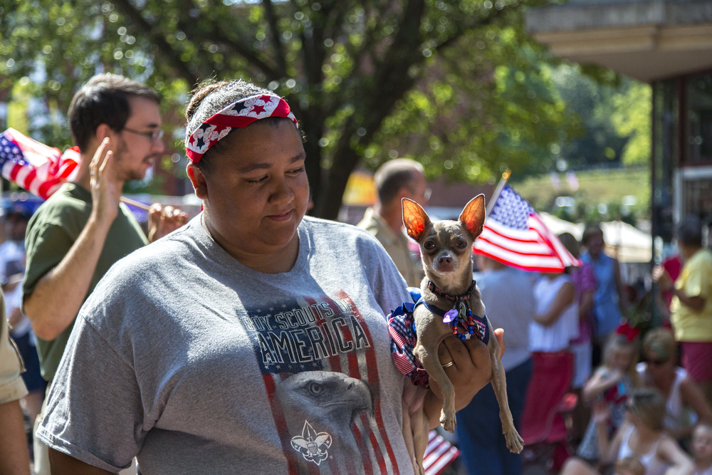 A lady smiles at her chihuahua, whose ears are backlit by sunlight; with American flags everywhere.