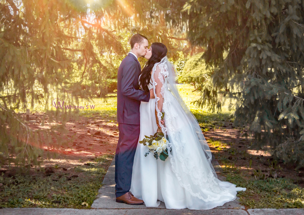 SimpsonFalinWedding_Photography by Whitney S Williams (204).jpg