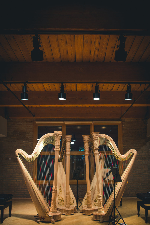 Chicago Harp Quartet-5.jpg