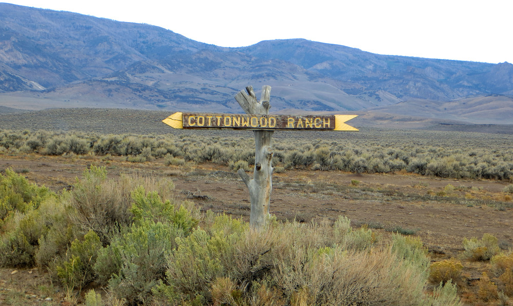 Cottonwood Ranch Sign.jpg