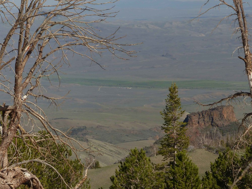 1cs P1150964 Cottonwood from mt top.jpg