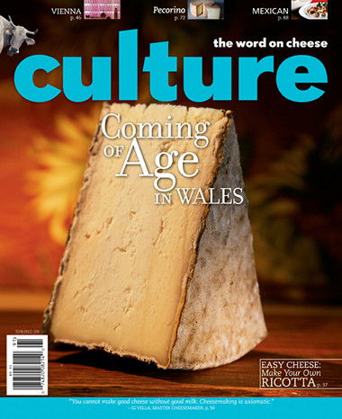 culture-magazine-cover-2009-spring.jpg