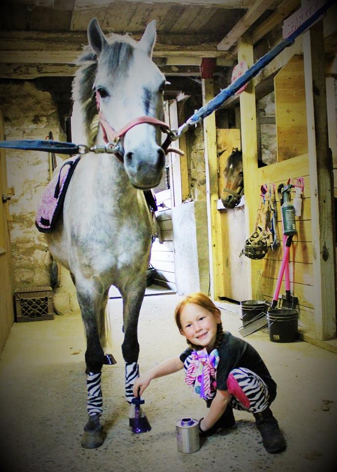 Natalie using POSH PURPLE Hoof Hi-Lites!