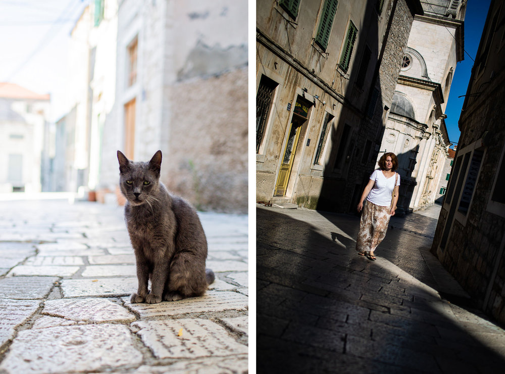 cat croatia sibenik