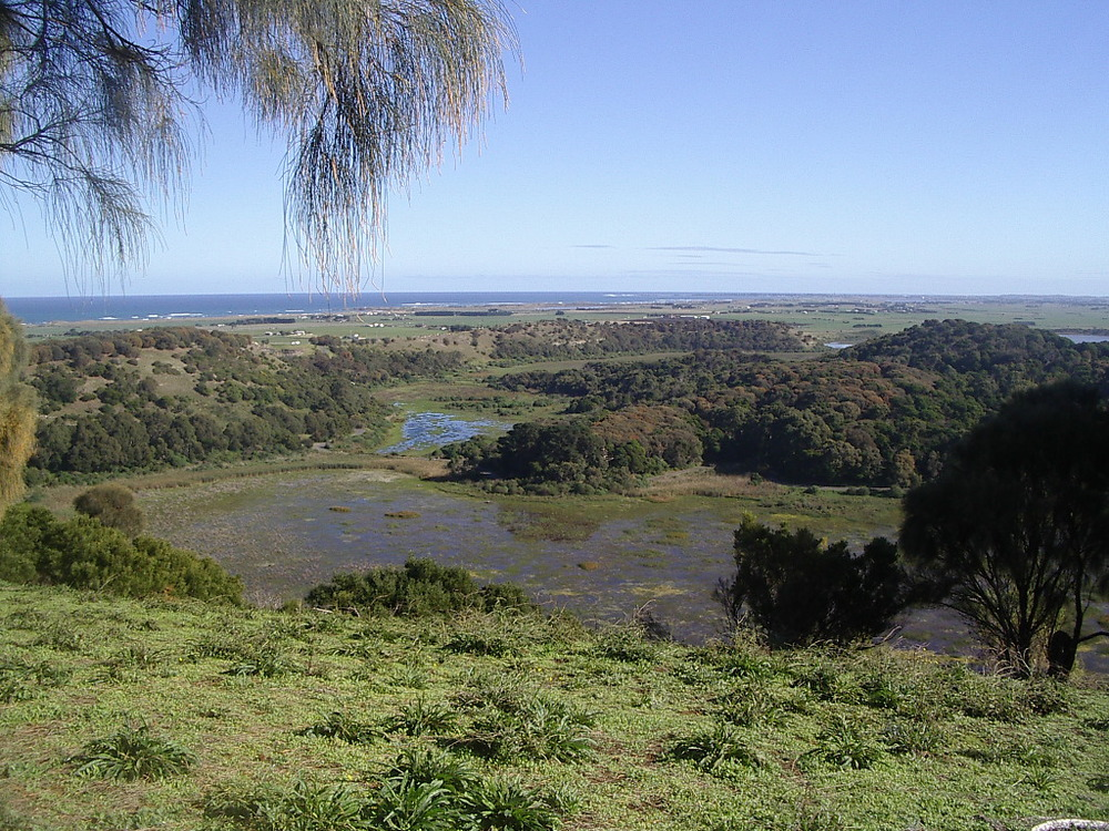 Tower Hill crater reserve.JPG